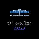 Велліон (Wellion)
